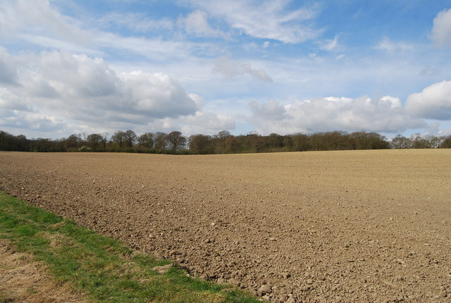 A large fallow field south of Hatchlands Farm, courtesy Wikimedia Commons